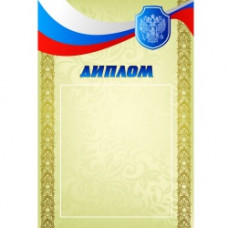 Диплом РФ 2 (170)